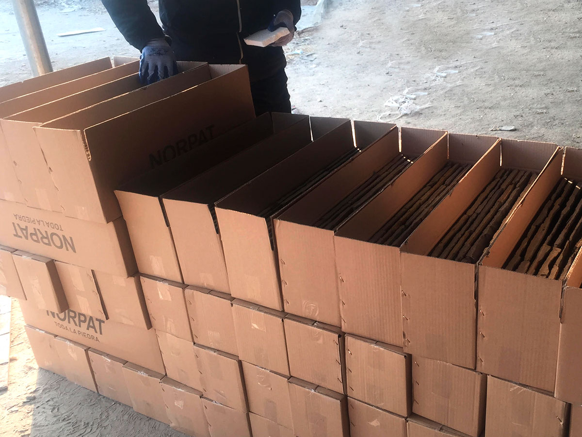 norpat-importados-02